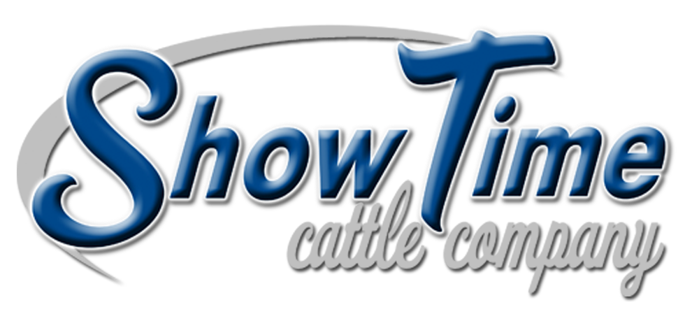 Hereford Show Cattle | Mooreland IN